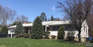 255 KNOLL Drive, Park Ridge, NJ 07656 - MLS#: 1816153