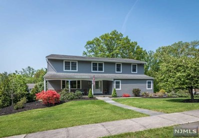 253 W CENTRAL Avenue, Pearl River, NY 10965 - MLS#: 1819616