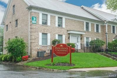 143 S MAPLE Avenue UNIT B, Park Ridge, NJ 07656 - MLS#: 1820379