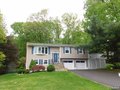 8 ALPINE Drive, Kinnelon Borough, NJ 07405 - MLS#: 1820489