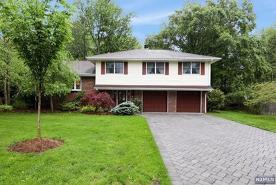 59 STEWART Street, Demarest, NJ 07627 - MLS#: 1821047