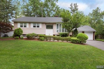 60 LINCOLN Terrace, Harrington Park, NJ 07640 - MLS#: 1824314