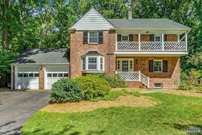 20 OLD WOODS Road, Saddle River, NJ 07458 - MLS#: 1828688