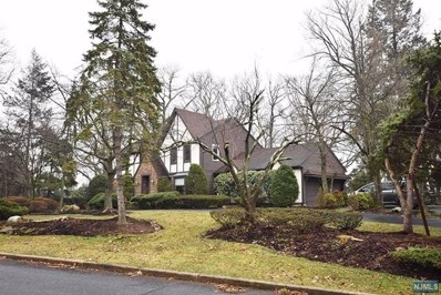 51 HORIZON Court, Twp of Washington, NJ 07676 - MLS#: 1836993