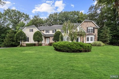 79 BIRCH Road, Franklin Lakes, NJ 07417 - MLS#: 1839592