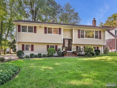20 CORNELIA Place, Glen Rock, NJ 07452 - MLS#: 1840321