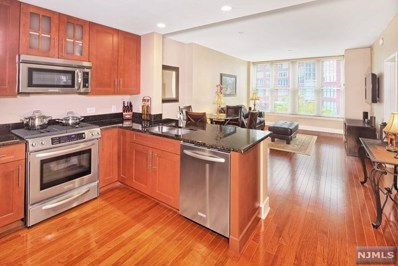1125 MAXWELL Lane UNIT 549, Hoboken, NJ 07030 - MLS#: 1845024