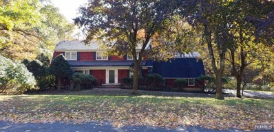 245 INDIAN TRAIL Drive, Franklin Lakes, NJ 07417 - MLS#: 1845231