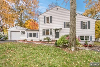 42 ROSSLEE Avenue, North Haledon, NJ 07508 - MLS#: 1845783
