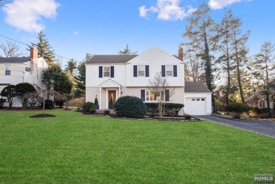 12 DOWNEY Drive, Tenafly, NJ 07670 - MLS#: 1904362