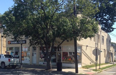 163-165 Shrewsbury Avenue, Red Bank, NJ 07701 - MLS#: 21728481