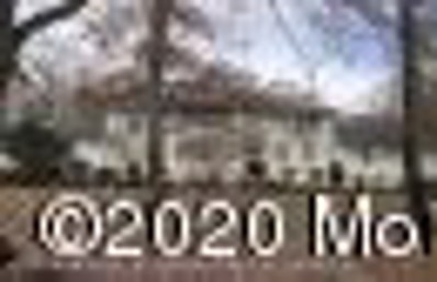 MLS: 21843212