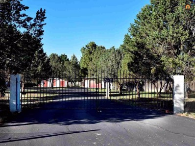 2601 W 23RD St, Roswell, NM 88201 - #: 20195166