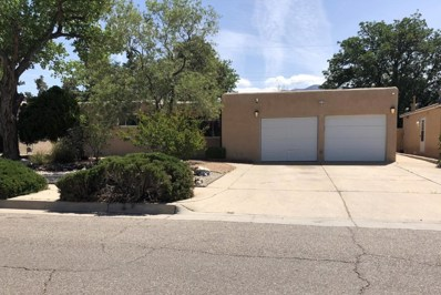 3604 Pitt Street NE, Albuquerque, NM 87111 - #: 919198