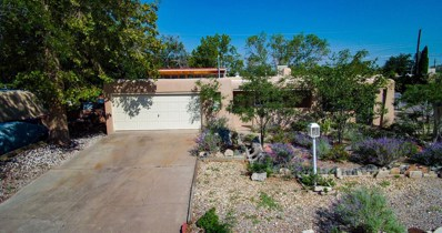 11019 Woodland Avenue NE, Albuquerque, NM 87112 - #: 919259