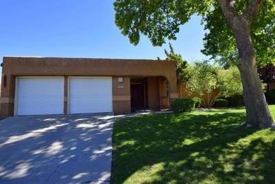 705 Fennel Court SE, Albuquerque, NM 87123 - #: 921968