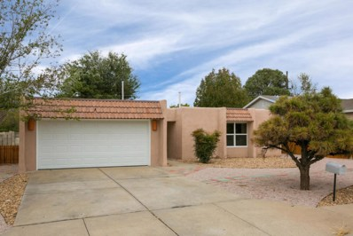 3213 Judy Place NE, Albuquerque, NM 87111 - #: 933514