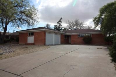 1101 Georgia Street NE, Albuquerque, NM 87110 - #: 941910