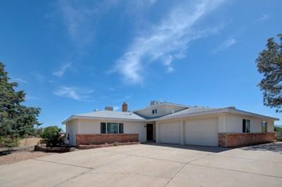 10200 Elmhurst Dr. NW, Albuquerque, NM 87114 - #: 943930