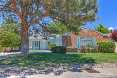 6805 Barber Place NE, Albuquerque, NM 87109 - #: 944618
