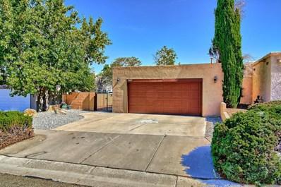 9827 Denali Road NE, Albuquerque, NM 87111 - #: 948615