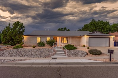 9701 Admiral Nimitz Avenue NE, Albuquerque, NM 87111 - #: 949072