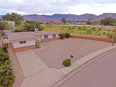 12813 Conejo Road NE, Albuquerque, NM 87123 - #: 950390