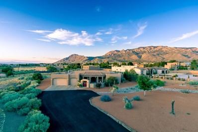 9921 Eagle Rock Avenue NE, Albuquerque, NM 87122 - #: 953291