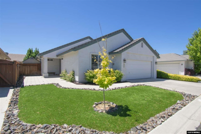 133 Sawgrass Lane, Dayton, NV 89403 - #: 180010038