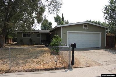 1217 E Musser St, Carson City, NV 89701 - #: 180011539