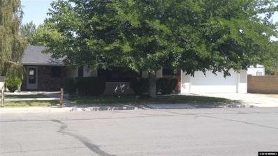 507 N Carson Meadow Dr, Carson City, NV 89701 - #: 180012696