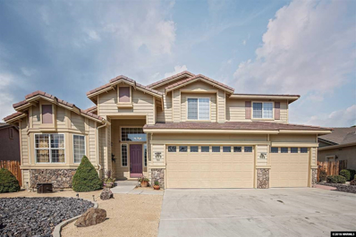 728 Gray Hawk Drive, Dayton, NV 89403 - #: 180013577