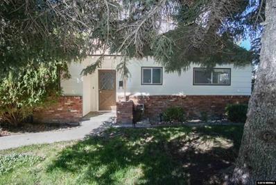 704 N Pratt Ave, Carson City, NV 89701 - #: 180013870