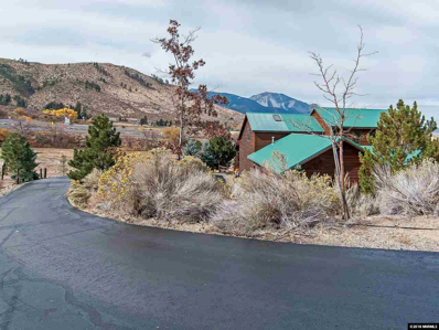 290 Duck Hill Road, Washoe Valley, NV 89704 - #: 180016484