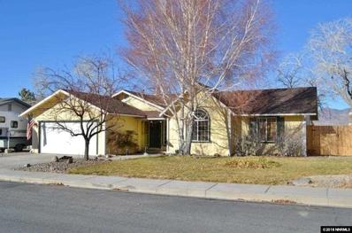 169 River Village Circle, Dayton, NV 89403 - #: 180018076