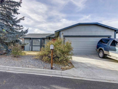 8593 Moth Cir, Reno, NV 89506 - #: 190000015