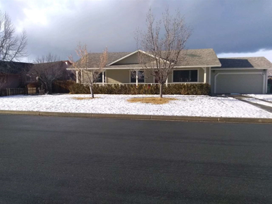 25 Nicole Court, Sparks, NV 89436 - #: 190000288