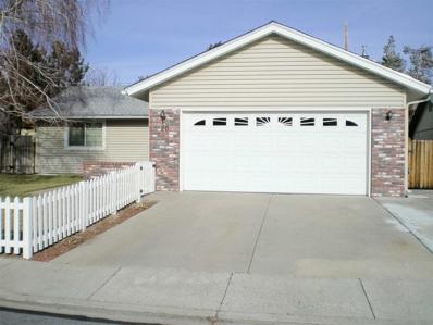 20 Tybo Circle, Carson City, NV 89706 - #: 190000508