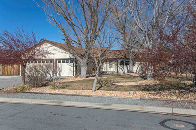 135 Regier Springs Drive, Sparks, NV 89441 - #: 190001020