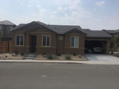 6695 Russian Thistle Drive, Sparks, NV 89436 - #: 190001733