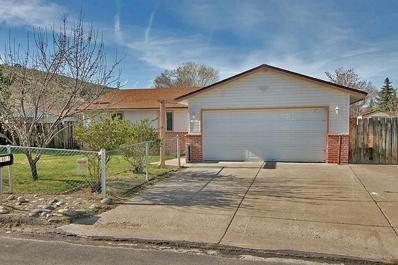 14015 Perlite Drive, Reno, NV 89521 - #: 190002003