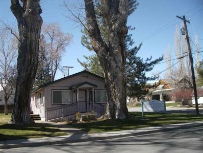 402 S Minnesota, Carson City, NV 89703 - #: 190003288
