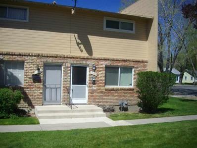 1101 S Nevada Street, Carson City, NV 89703 - #: 190005805