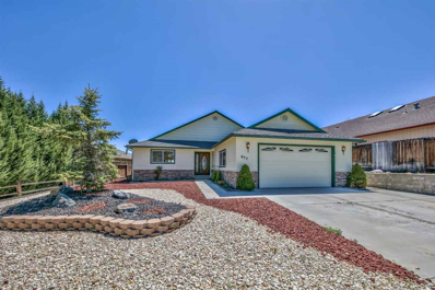 977 Ranchview, Carson City, NV 89705 - #: 190006101