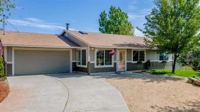 301 Hoge Road, Reno, NV 89506 - #: 190006980