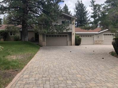 4200 Levi Gulch, Carson City, NV 89703 - #: 190007612