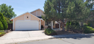 429 Sunwood Drive, Carson City, NV 89701 - #: 190009535