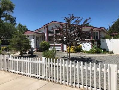 2940 Poole Way, Carson City, NV 89706 - #: 190010332