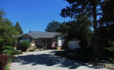 1228 Pleasantview Drive, Gardnerville, NV 89460 - #: 190012829