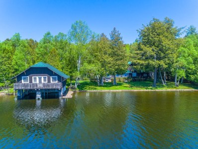 22 Deerpath Ln, Saranac Lake, NY 12983 - #: 162845